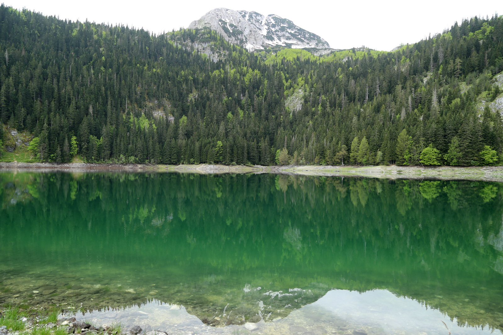 The Black laka (Crno Jezero) in Durmitor