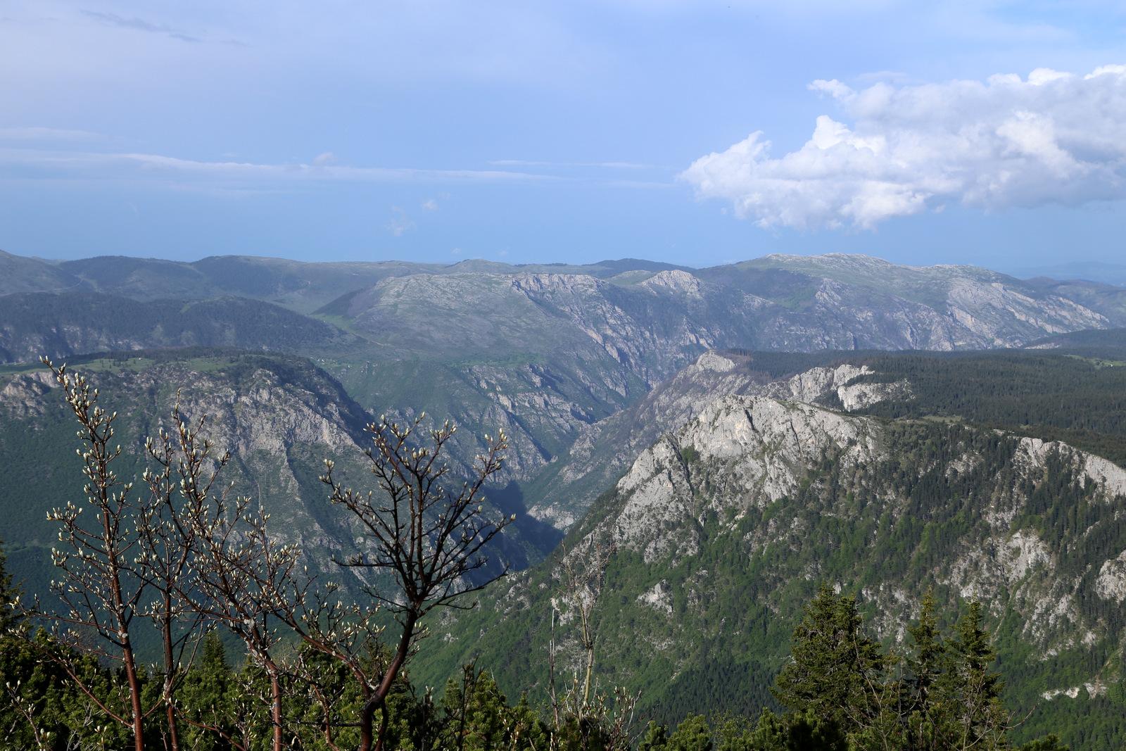 Tara canyon views
