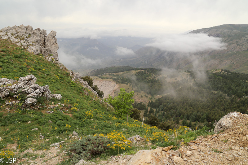 Sicily-377