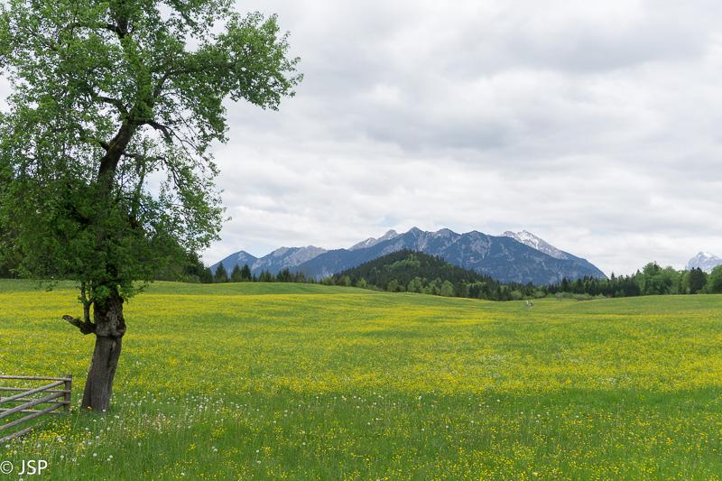 Bavaria-18