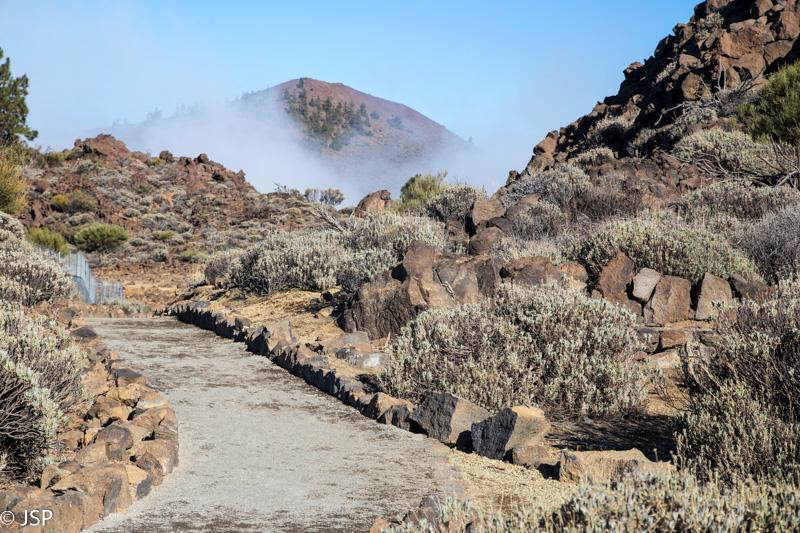 Tenerife-46
