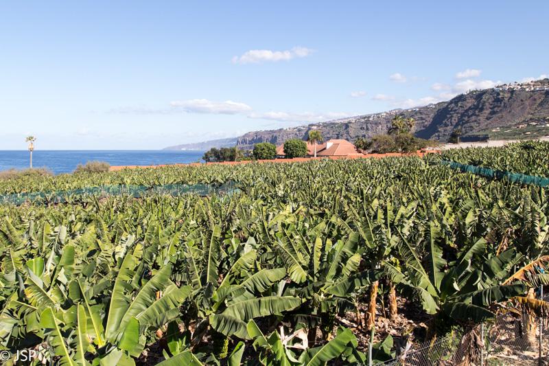 Tenerife-60
