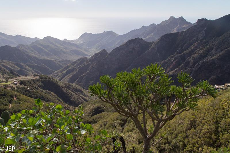 Tenerife-89