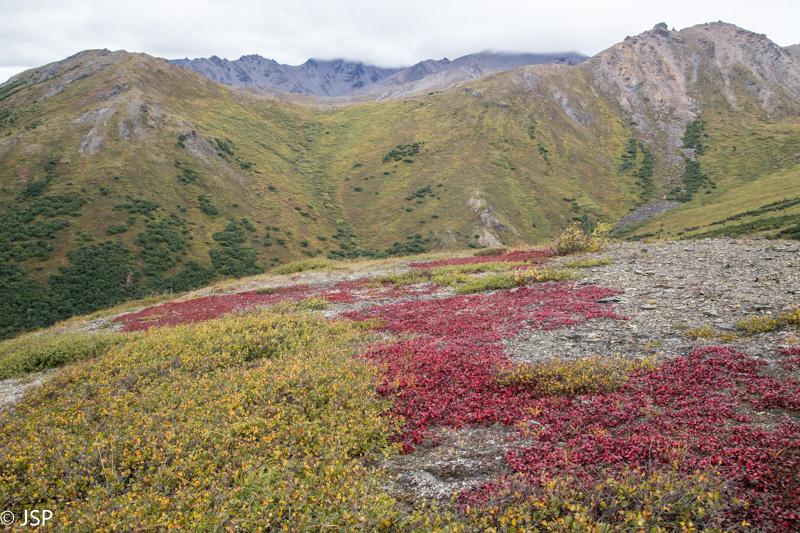 Alaska-60