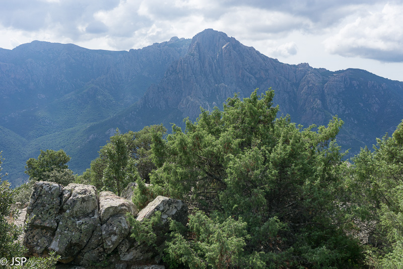 Corsica-128