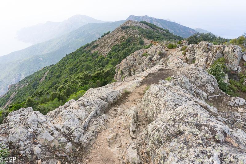 Corsica-75
