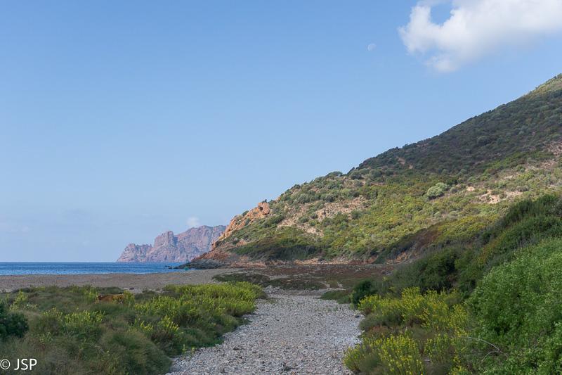 Corsica-94