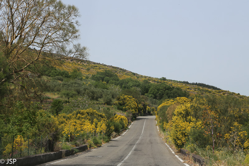 Sicily-299