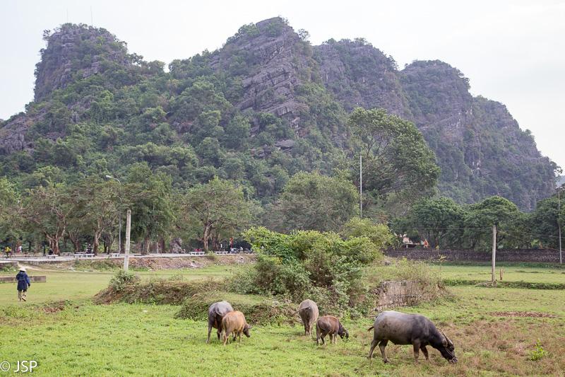 Vietnam-146
