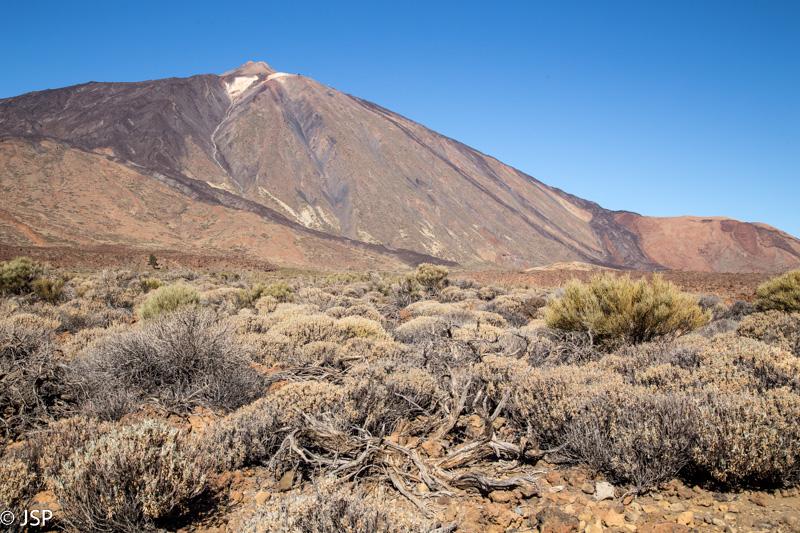 Tenerife-28